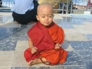 baby-Buddha-180x135